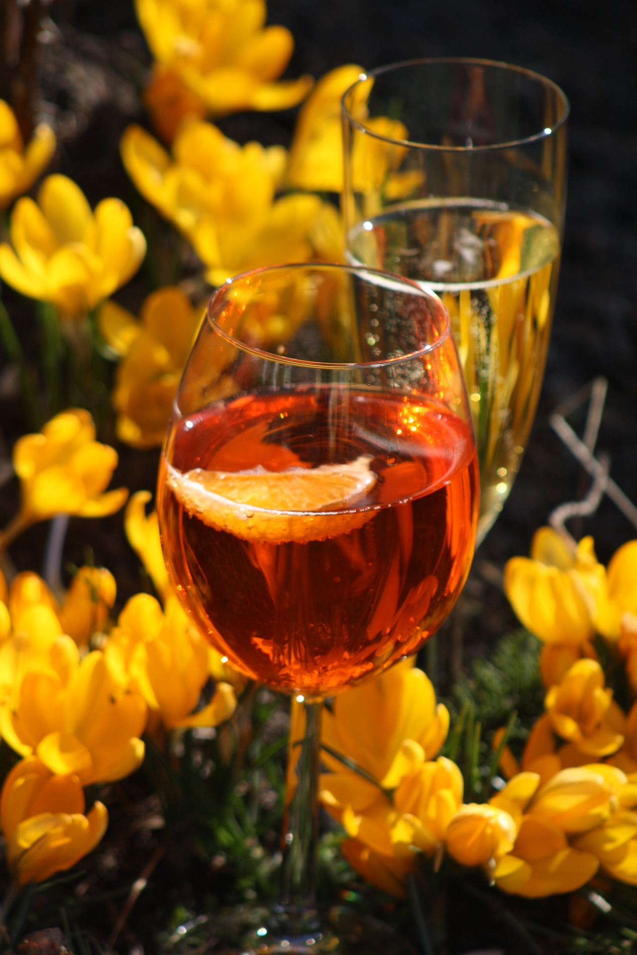 The Perfect Wine for This Mother\'s Day! - Ideal Wine Company Blog